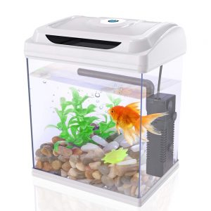 DADYPET Mini Aquarium Combattant, Aquarium Betta