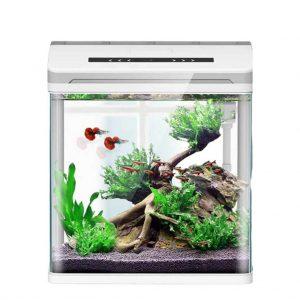 Aquariums pour combattant Smart Hjd